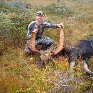 Newfoundland Big Game Hunting Rates Moose Hunts