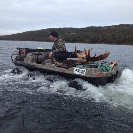 Newfoundland Moose Hunting Guides