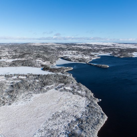 Newfoundland big game hunting adventure