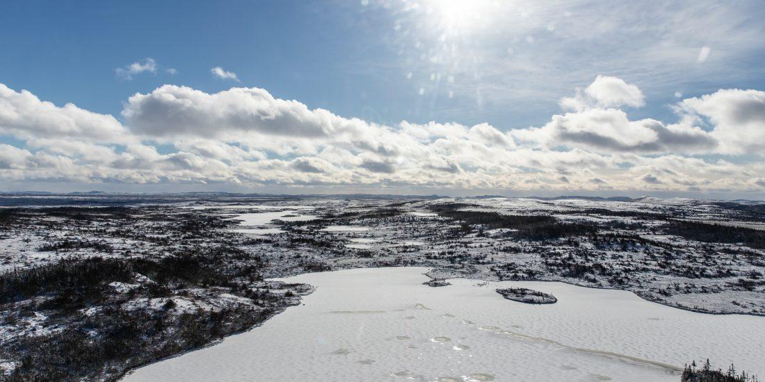 Moose Hunting Newfoundland Canada